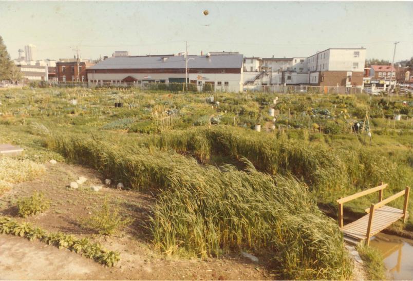 Jardin communautaire biologique le Tourne-Sol